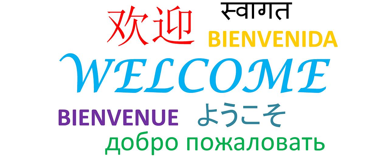 多数の言語